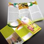 download gratis inspirasi contoh desain design brosur company profile profil 12
