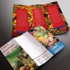 download gratis inspirasi contoh desain design brosur company profile profil 23
