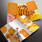download gratis inspirasi contoh desain design brosur company profile profil 27