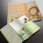 download gratis inspirasi contoh desain design brosur company profile profil 7