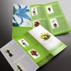 download gratis inspirasi contoh desain design brosur company profile profil 8
