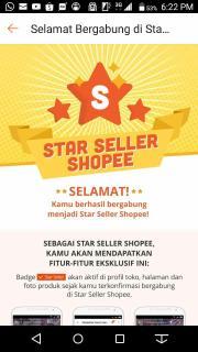 star seller cahyo peluang bisnis online terbaik usaha rumahan modal kecil pendapatan penghasilan sampingan